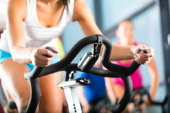 stock image of  women doing sport spinning