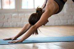stock image of  young woman practicing yoga, downward facing dog exercise close