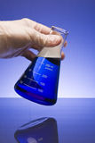 Taça no azul Imagem de Stock Royalty Free