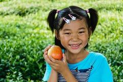 Ta äpplet av asiatiska flickor Royaltyfria Bilder