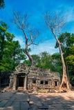 Ta Świątynia ruiny Prohm Obrazy Royalty Free