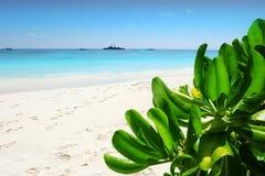 Ta柴海岛海滩 Phang Nga,泰国 免版税库存照片