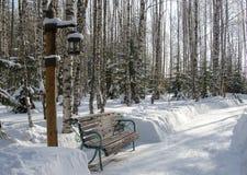 Ta av planet i parkera i vinter Royaltyfri Foto