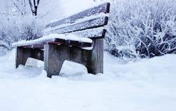 Ta av planet i vinter parkerar Royaltyfri Fotografi