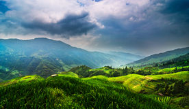 Ta av planet terrassen av Longsheng Arkivfoton