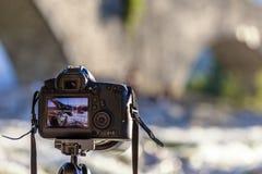Ta ett foto med en DSLR-kamera Arkivfoton