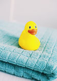Żółta gumowa kaczka Obraz Stock