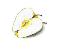Żółta jabłczana owoc odizolowywa na białym tle Koloru nakreślenia porady pióra Obrazy Stock