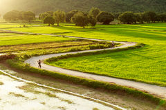 Ta-pa, een Giang, Vietnam royalty-vrije stock foto's
