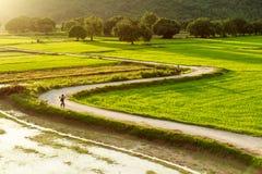 Ta-PA, An Giang, Vietnam royaltyfria foton