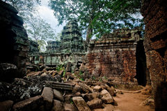 Ta Phrom寺庙的古老废墟,吴哥窟柬埔寨 免版税库存图片