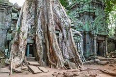 TA Phrom σε Angkor Wat, Καμπότζη Στοκ εικόνες με δικαίωμα ελεύθερης χρήσης