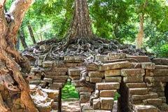 TA Phrom σε Angkor Wat, Καμπότζη Στοκ Εικόνες