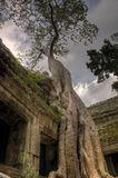 Ta Phrom Photo stock