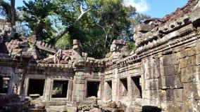 Ta Phrom,  Angkor, Siem Reap Royalty Free Stock Photos