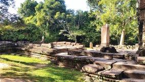 Ta Phrom,  Angkor, Siem Reap Royalty Free Stock Photo