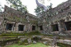 Ta Phrom, Angkor Wat, Cambodia Royalty Free Stock Image