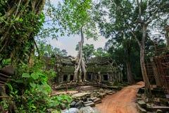 Ta Phrom, Angkor Wat, Camboja Imagens de Stock Royalty Free