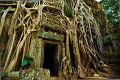 Free Ta Phrom Doorway Stock Images - 40422724