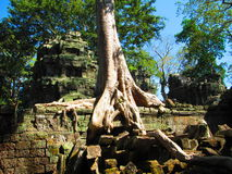 Ta Phrom Royalty Free Stock Image