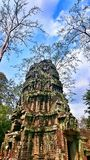 Ta Phrom Temple in Angkor Archeological Park Royalty Free Stock Photography