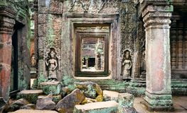 Free Ta Phrom Temple Ruins In Angkor, Siem Reap, Cambodia Royalty Free Stock Photography - 104747207