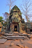 Ta Phrom Temple, Siem Reap Royalty Free Stock Photography