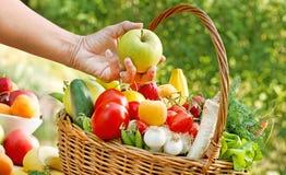 Ta precis kontrollerade frukter och grönsaker Arkivbilder