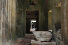 Ta Prohm寺庙在吴哥窟 库存照片