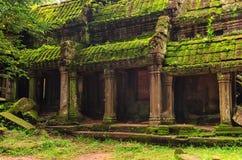 Ta Prohm寺庙在吴哥,暹粒,柬埔寨 免版税库存照片