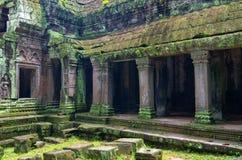 Ta Prohm寺庙在吴哥,暹粒,柬埔寨 库存图片