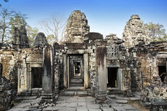 Ta Prohm寺庙废墟在吴哥窟暹粒,柬埔寨, 12世纪 免版税库存照片