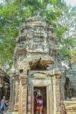 Ta prohm寺庙暹粒市和旅游参观吴哥窟,暹粒市柬埔寨 库存图片