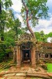 Ta Prohm,一部分的古老高棉寺庙复合体在密林 图库摄影