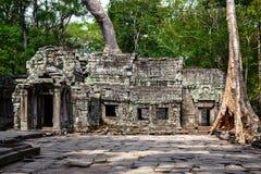 Ta Prohm świątynia Fotografia Stock