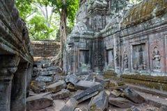 Ta Prohm świątynia Zdjęcia Stock