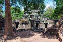 Ta Prohm świątynia Zdjęcia Royalty Free