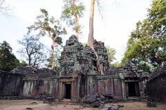 Ta Prohm świątynia Obraz Stock