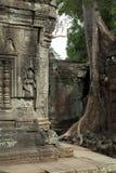 Ta Prohm świątynia w Angkor Wat Zdjęcie Royalty Free