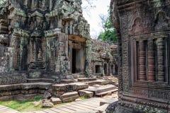 Ta Prohm świątynia w Kambodża Zdjęcie Stock