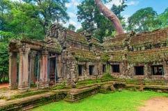 TA Prohm, μέρος του αρχαίου Khmer ναού σύνθετου στη ζούγκλα Στοκ Εικόνα