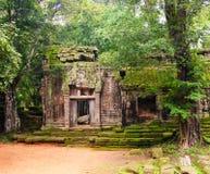 TA Prohm, μέρος του αρχαίου Khmer ναού σύνθετου στη ζούγκλα Στοκ Εικόνες