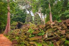 TA Prohm, μέρος του αρχαίου Khmer ναού σύνθετου στη ζούγκλα Στοκ φωτογραφίες με δικαίωμα ελεύθερης χρήσης