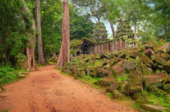 TA Prohm, μέρος του αρχαίου Khmer ναού σύνθετου στη ζούγκλα Στοκ εικόνες με δικαίωμα ελεύθερης χρήσης