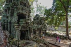 TA Prohm, μέρος του Khmer ναού σύνθετο, Ασία η Καμπότζη συγκεντρώνει siem Αρχαία Khmer αρχιτεκτονική στη ζούγκλα Στοκ εικόνες με δικαίωμα ελεύθερης χρήσης