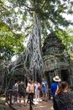 TA Prohm, μέρος του Khmer ναού σύνθετο, Ασία η Καμπότζη συγκεντρώνει siem Αρχαία Khmer αρχιτεκτονική στη ζούγκλα Στοκ Φωτογραφίες