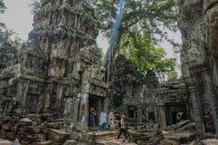 TA Prohm, μέρος του Khmer ναού σύνθετο, Ασία η Καμπότζη συγκεντρώνει siem Αρχαία Khmer αρχιτεκτονική στη ζούγκλα Στοκ Εικόνες