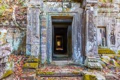 TA Prohm, μέσα στο ναό, Καμπότζη Στοκ Εικόνες