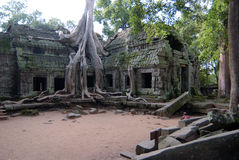 Ta Prohm. Temples of Angkor, Ta Prohm, Cambodia royalty free stock photography