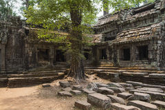 Ta Prohm Stockfoto